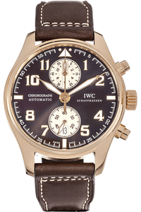 Pilot's Antoine De Saint Exupery Limited Edition Rose Gold Automatic