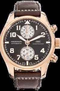 Pilot's Antoine De Saint Exupery Limited Edition Rose Gold Automatic