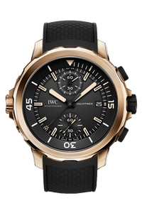 Aquatimer Chronograph Edition Expedition Charles Darwin