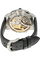 PanoMaticChrono Platinum Automatic