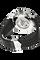 Carrera Monaco Grand Prix LE Stainless Steel Automatic