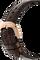 Cintree Curvex Perpertual Calendar Rose Gold Automatic