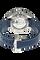 Seamaster Planet Ocean Co-Axial GMT Titanium Automatic