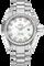 Seamaster Aqua Terra Stainless Steel Quartz