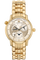 Master Control Geographic Yellow Gold Automatic