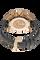 Grand Prix de Monaco Historique Limited Edition Rose Gold Automatic