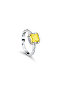 Joy Solitaire in 18K Platinum and Yellow Gold