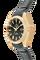 Seamaster Aqua Terra Co-Axial Yellow Gold Automatic