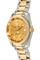 Aqua Terra Master Yellow Gold and Stainless Steel Automatic